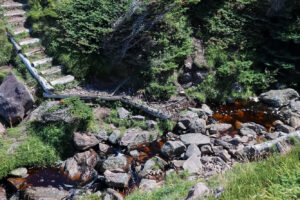 A small rocky brook with a wooden staircase on a hiking trail
