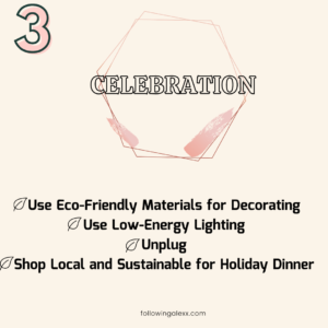 3 WAYS TO BE ECO-FRIENDLY DURING THE HOLIDAYS