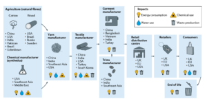 Environmental Impacts On Each Step of the Fast Fashion Lifecycle