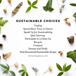 Sustainable choices for eco-friendly goals