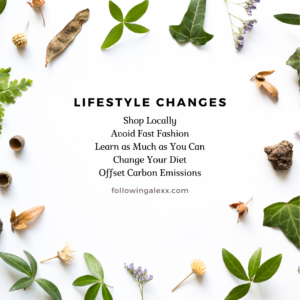 Lifestyle Changes for Eco-Friendly Goals