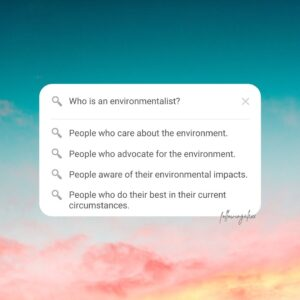 Imperfect Environmentalist - what it means