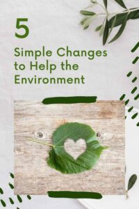 5 Simple Changes to Help the Environment